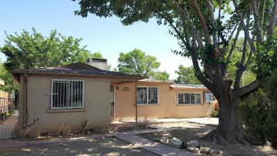Albuquerque Single Family Home For Sale: 1349 Young Avenue SW