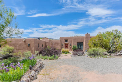 Abiquiu NM Single Family Home For Sale: $955,000