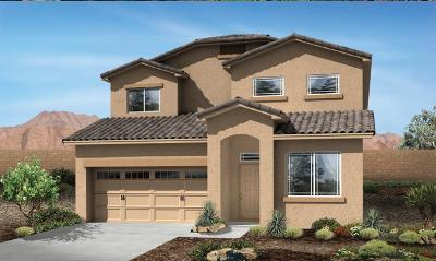 rio rancho Single Family Home For Sale: 1041 Grace Court NE