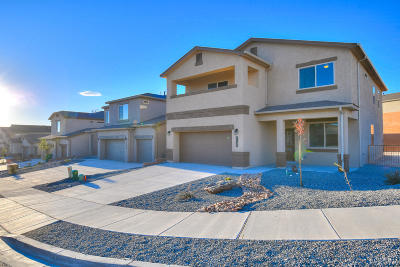 Rio Rancho Single Family Home For Sale: 1135 Grace Street NE