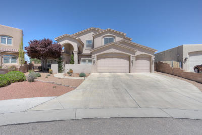 Rio Rancho Single Family Home For Sale: 3236 Greystone Court SE