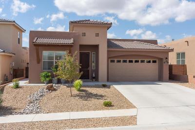 Albuquerque NM Single Family Home For Sale: $384,900