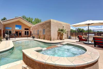 Albuquerque Single Family Home For Sale: 2924 Los Anayas Road NW