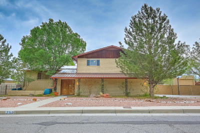 Albuquerque Single Family Home For Sale: 7317 Aztec Road NE