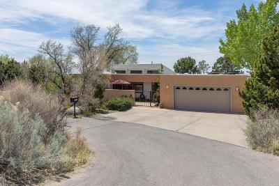 Albuquerque Single Family Home For Sale: 726 Tramway Vista Place NE #5