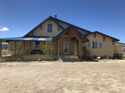 Catron County Single Family Home For Sale: 910 Greens Gap Road