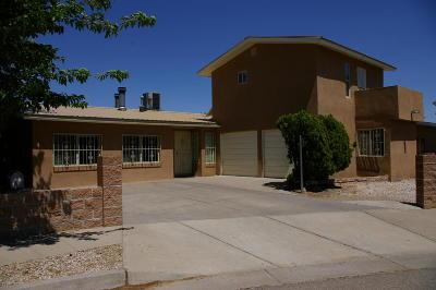 Albuquerque Single Family Home For Sale: 8619 Robby Avenue SW