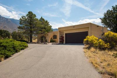 Albuquerque Single Family Home For Sale: 432 Live Oak Road NE