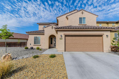 Albuquerque Single Family Home For Sale: 9505 Flint Rock Drive NW