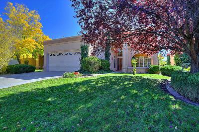 Albuquerque Single Family Home For Sale: 9512 Callaway Circle NE