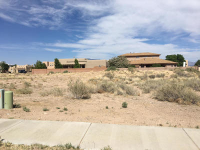 Albuquerque Residential Lots & Land For Sale: 6206 Tesuque Drive NW
