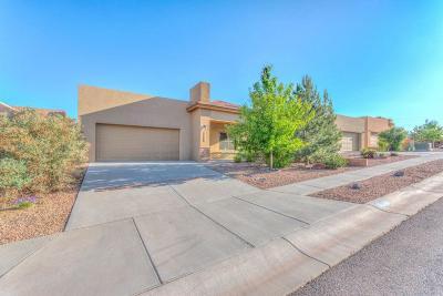 Albuquerque NM Single Family Home For Sale: $249,900