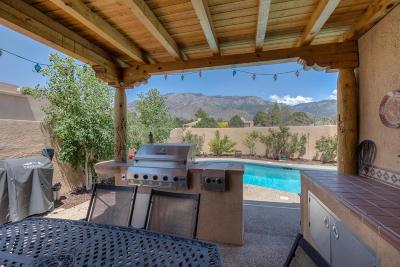 Albuquerque Single Family Home For Sale: 2025 Quail Run Drive NE