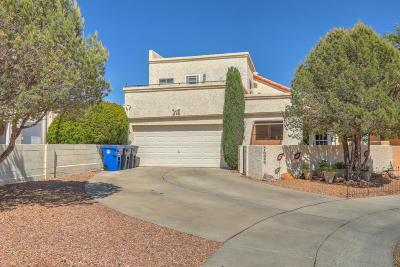 Albuquerque NM Single Family Home For Sale: $259,800