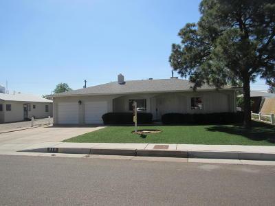 Albuquerque Single Family Home For Sale: 219 Montclaire Drive NE