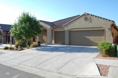 Albuquerque Single Family Home For Sale: 12019 Pocono Road SE