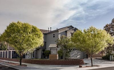 Albuquerque Single Family Home For Sale: 7952 Burkett Avenue NW