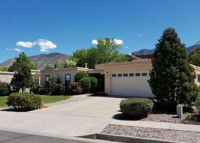 Albuquerque Single Family Home For Sale: 1012 Daskalos Drive NE