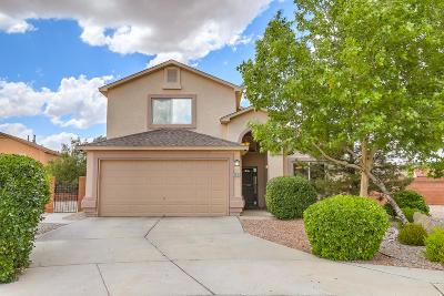 Albuquerque Single Family Home For Sale: 10031 Calle Allegro NW