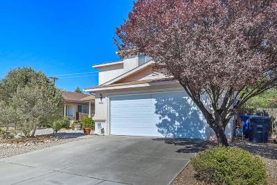 Albuquerque Single Family Home For Sale: 9024 Pumice Street NE