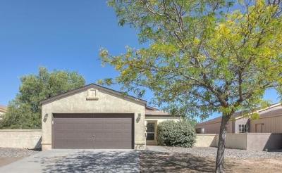 Single Family Home For Sale: 1073 Cactus Drive NE
