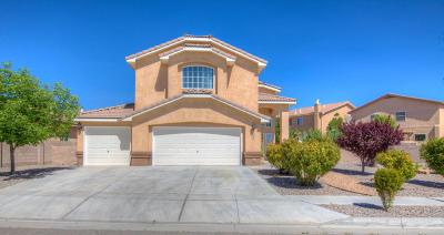 Albuquerque Single Family Home For Sale: 1443 Wind Ridge Drive NW