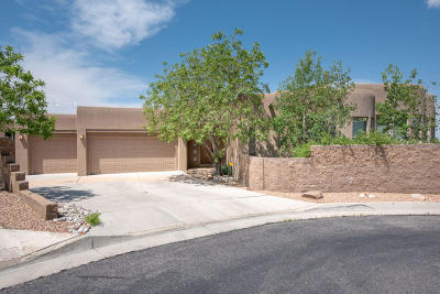 Albuquerque Single Family Home For Sale: 5215 Foothills Trail NE