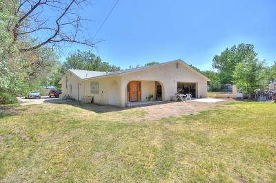 Albuquerque Single Family Home For Sale: 2311 Raymac Road SW