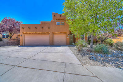 Albuquerque Single Family Home For Sale: 10709 Rocky Mountain Drive NW