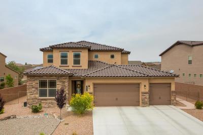 Rio Rancho Single Family Home For Sale: 1615 Vista De Colinas Drive SE