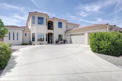 Rio Rancho Single Family Home For Sale: 7000 Kalgan Road NE