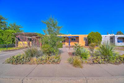 Albuquerque Single Family Home For Sale: 833 Dakota Street SE