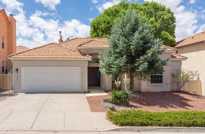 Albuquerque Single Family Home For Sale: 11904 Ibex Avenue NE