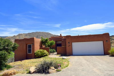 Albuquerque Single Family Home For Sale: 608 Autumnwood Place SE