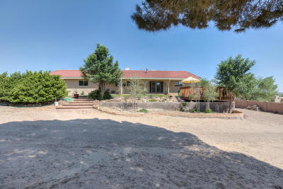 Corrales Single Family Home For Sale: 353 Reclining Acres Road