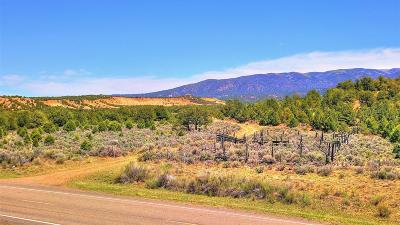 Sandoval County Farm & Ranch For Sale: Tract 2 Lands Of Swanson Sr 96