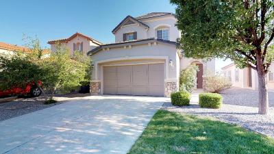 Rio Rancho Single Family Home For Sale: 1012 Waterfall Drive NE