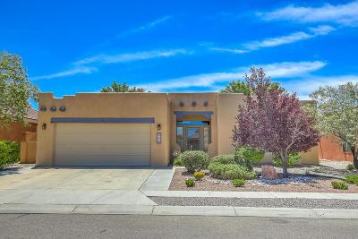 Albuquerque Single Family Home For Sale: 808 Via Elegante NE
