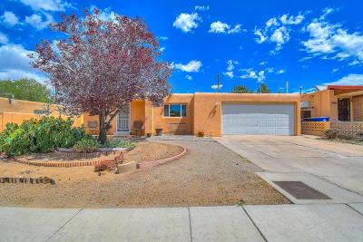 Albuquerque Single Family Home For Sale: 10505 Towner Avenue NE