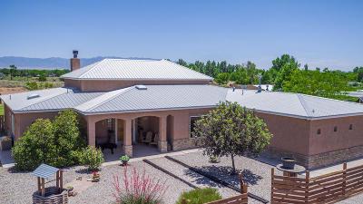 Valencia County Single Family Home For Sale: 24 Cielo Vista Road