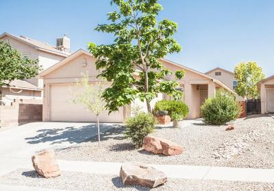 Albuquerque Single Family Home For Sale: 9612 Desert Mesa Road SW NW