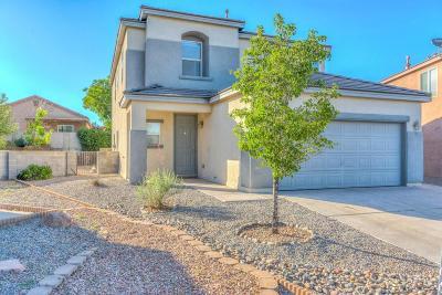 Albuquerque, Rio Rancho Single Family Home For Sale: 601 Teresa Court SE