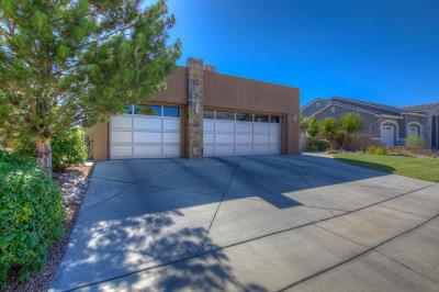 Albuquerque Single Family Home For Sale: 8205 Desert Lily Lane NE