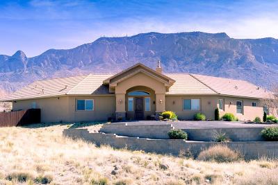 Bernalillo County Single Family Home For Sale: 11609 San Francisco Road NE
