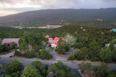 Tijeras, Cedar Crest, Sandia Park, Edgewood, Moriarty, Stanley Single Family Home For Sale: 113 Sangre De Cristo