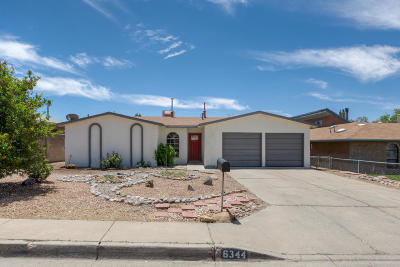Single Family Home For Sale: 6344 Christy Avenue NE