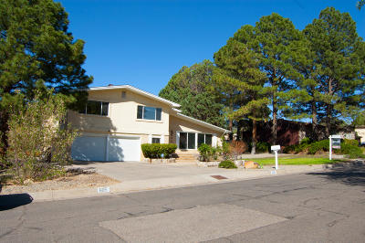 Bernalillo County Single Family Home For Sale: 605 Running Water Circle SE