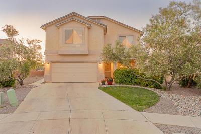 Albuquerque, Rio Rancho Single Family Home For Sale: 1440 Peppoli Loop SE