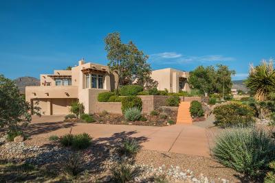 Bernalillo County Single Family Home For Sale: 9631 Desert Mountain Road NE
