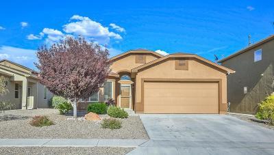 Albuquerque, Rio Rancho Single Family Home For Sale: 4022 Desert Lupine Drive NE